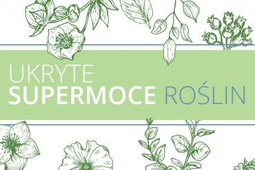 Ukryte supermoce roślin – najlepsze rośliny domowe dla Twojegociała iumysłu
