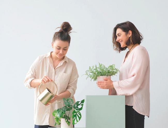Projekt Rośliny- jak zaprzyjaźnić się z kwiatami