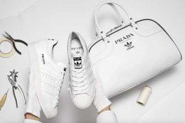 Adidas x Prada - mamy pierwsze zdjęcia!
